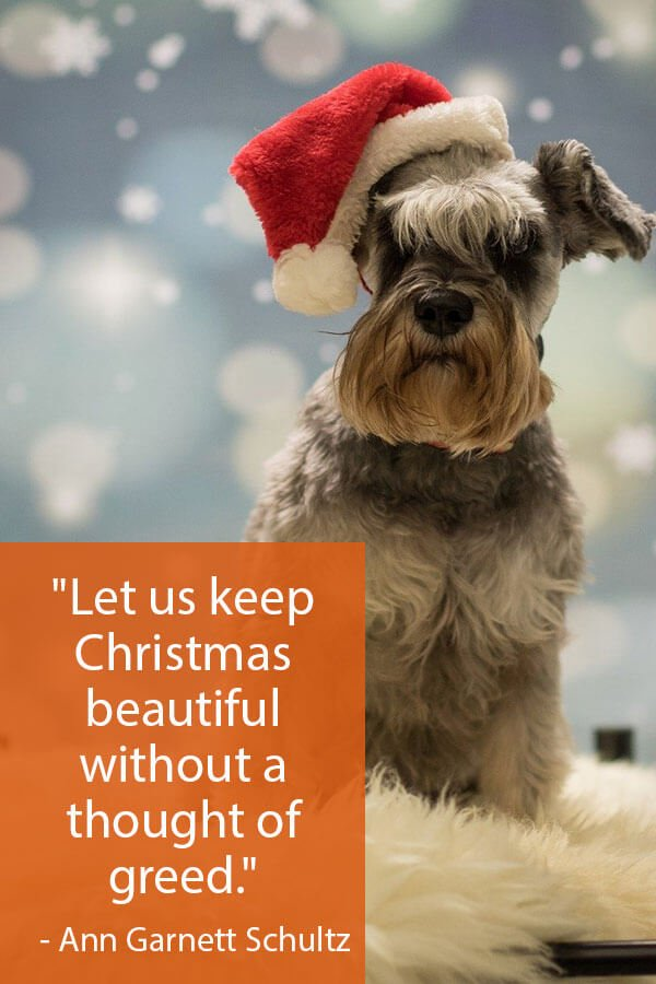 30 Inspirational Christmas Quotes 5
